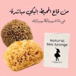 إسفنج البحر الطبيعي 100% ناعم للوجه – Glamour D Nour